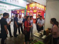 甘洛县农特产品亮相武汉电博会,成为展会焦点