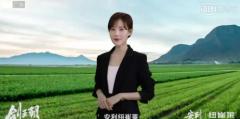 冯小刚首部监制网剧《剑王朝》热播 电影级品质构建营销的质感与品格