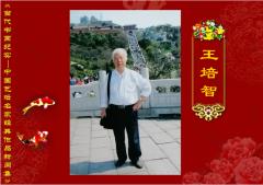 【当代书画纪实】王培智― 中国艺坛名家经典作品新闻集