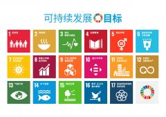 首届可持续发展教育与儿童友好综合发展研讨会召开