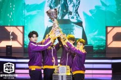 2021 PEL S3创新跨界合作见证紫金王朝,NV腾讯视频战队勇夺赛季冠军